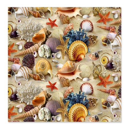 Seashell Shower Curtains